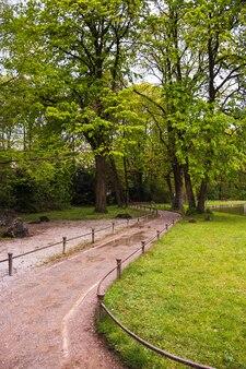 Percorso attraverso il parco con alberi verdi