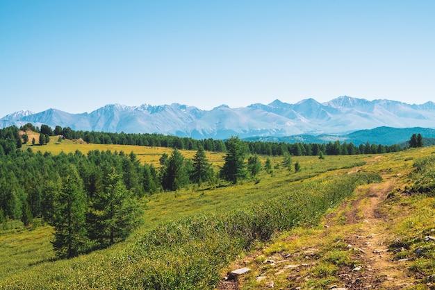 Percorso di montagne giganti con neve attraverso la valle verde sotto il cielo blu chiaro. prato con ricca vegetazione di altopiani alla luce del sole. incredibile paesaggio montano innevato di natura maestosa.