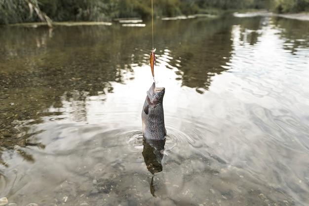 Persona che pesca un pesce con una canna