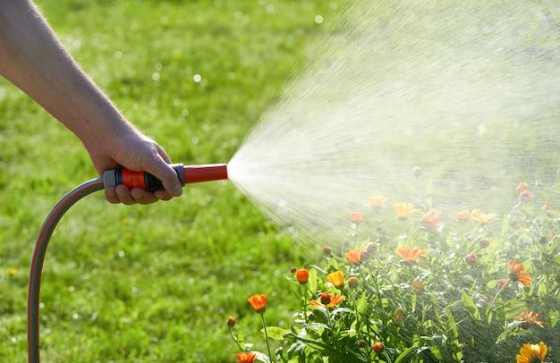 Persona irriconoscibile annaffia fiori e piante con un tubo flessibile nel giardino di casa