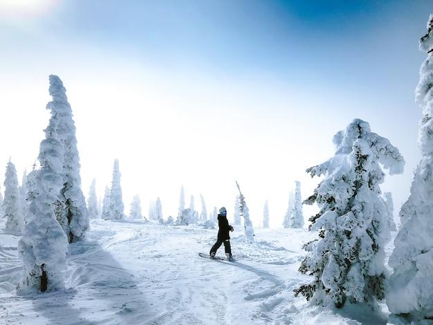 Persona su uno snowboard guardando indietro su una superficie innevata circondata da alberi
