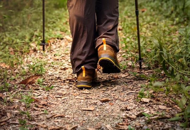 Persone che camminano nella foresta