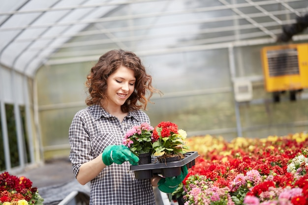 Persone che lavorano in un negozio di giardinaggio