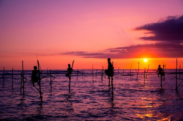 Pescatore tradizionale su palafitte nello sri lanka