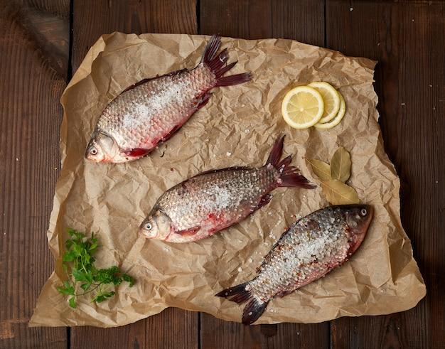 Pesce crucian fresco intero con squame su un pezzo di carta marrone spiegazzato