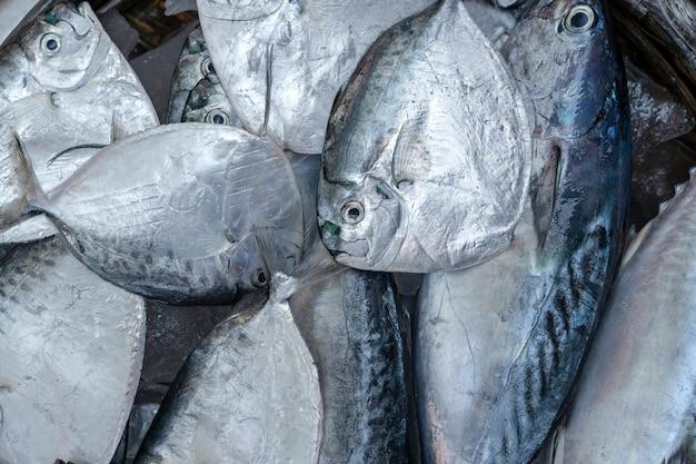 Pesce di mare fresco da vendere al mercato degli alimenti di strada