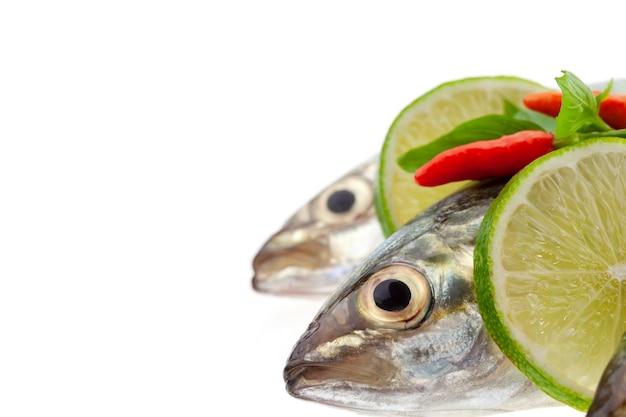 Pesce fresco con limone e foglia isolato su sfondo bianco