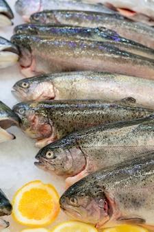 Pesce fresco della trota su un contatore del ghiaccio in un supermercato.