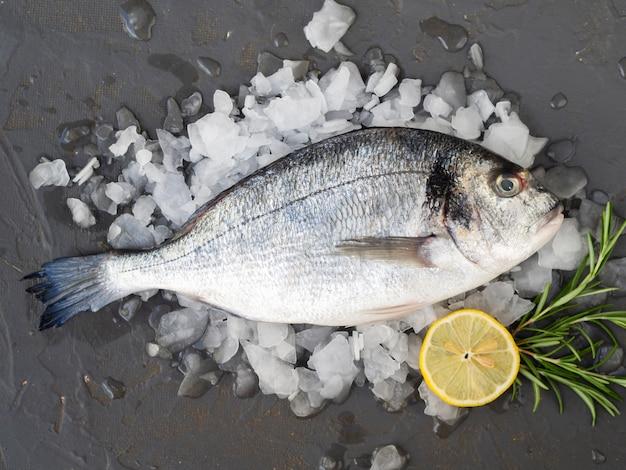 Pesce fresco di primo piano con limone e rosmarino
