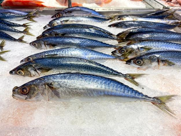Pesce fresco di saba su ghiaccio da vendere nel supermercato