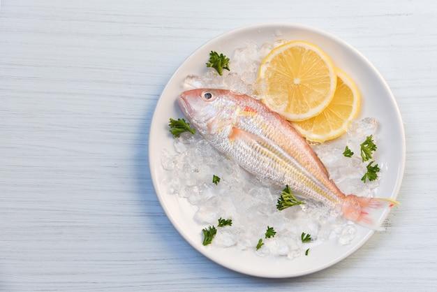 Pesce fresco gourmet dell'oceano del piatto di pesce dei frutti di mare sul prezzemolo del limone del ghiaccio sulla tavola del piatto bianco