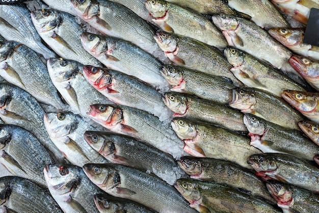 Pesce fresco in vetrina