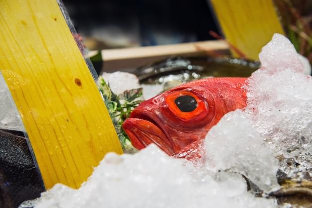 Pesce fresco su ghiaccio al mercato dei frutti di mare