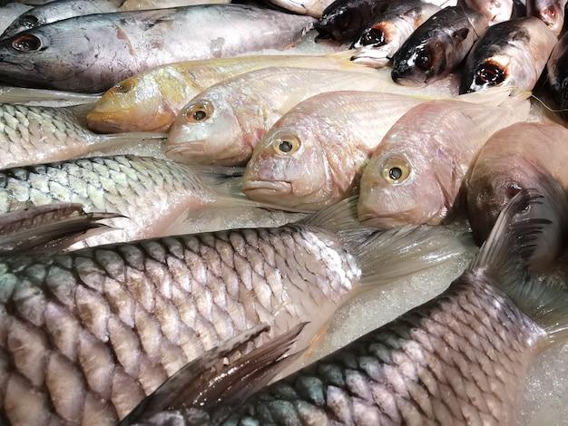 Pesce fresco sul ghiaccio per la vendita nel mercato