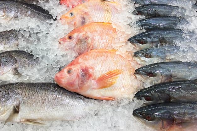 Pesce fresco sulla piattaforma di ghiaccio.