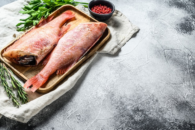Pesce persico crudo rosso. spazio per il testo