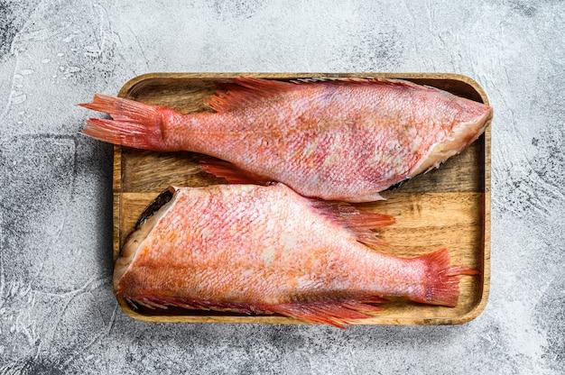 Pesce persico crudo rosso.