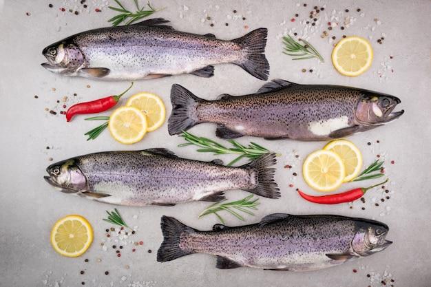 Pesce trota con sale, limone, rosmarino, spezie ed erbe su sfondo grigio