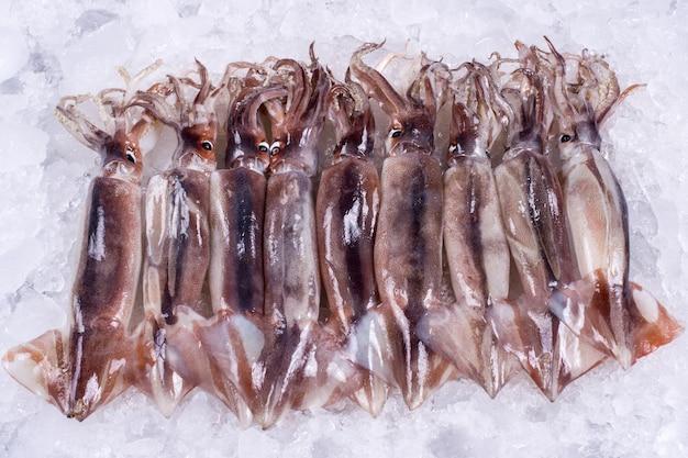 Pesci freschi dell'oceano su ghiaccio
