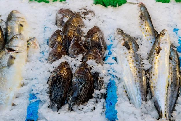 Pesci freschi in un mercato