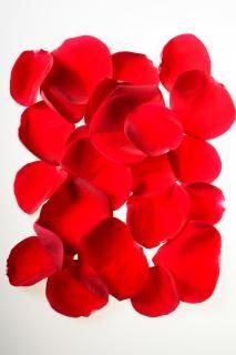 Petali di rosa, l'impegno, la decorazione
