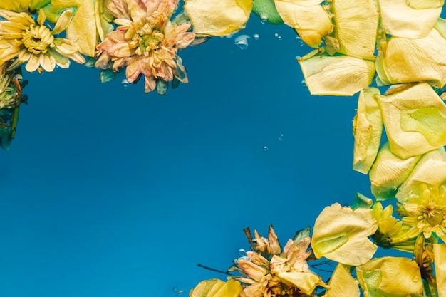 Petali e fiori gialli in acqua blu con lo spazio della copia