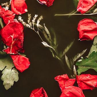 Petali rossi di vista superiore con le foglie in acqua nera