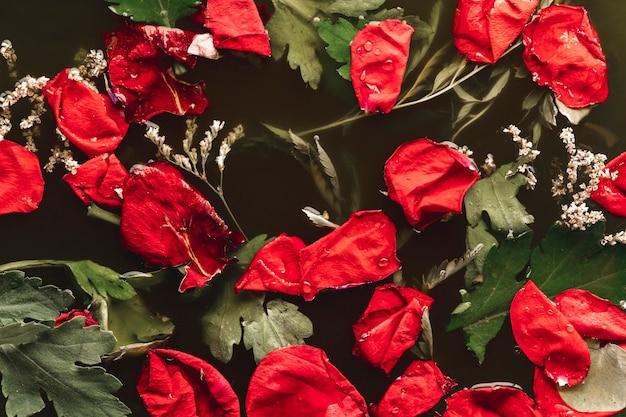 Petali rossi distesi con foglie in acqua nera
