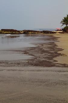 Pezzi di prodotti petroliferi lavati in riva al mare