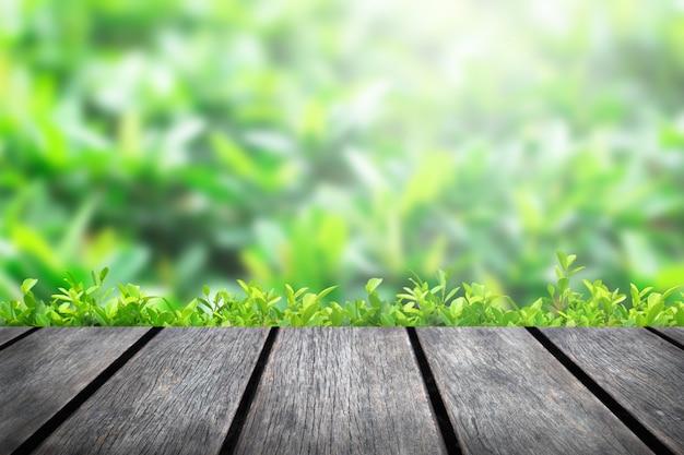 Piano d'appoggio di legno su fondo verde della sfuocatura degli alberi nel parco
