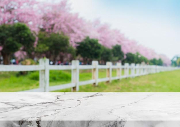Piano d'appoggio di pietra ed albero vago del fiore nel fondo del giardino con il filtro d'annata