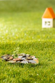 Pianta che cresce in vaso di vetro di monete per soldi su erba verde