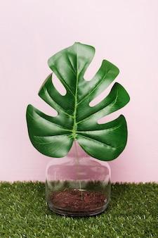 Pianta decorativa all'interno di vaso minimale