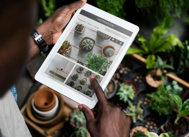 Pianta la botanica di giardinaggio di crescita verde naturale