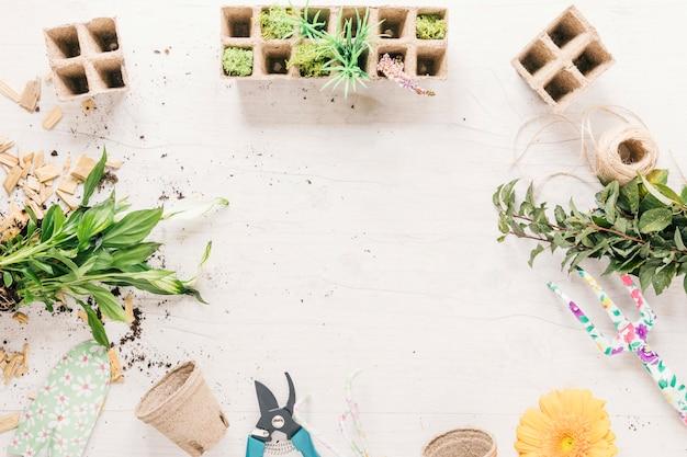 Pianta; pentola di torba; rastrello; stringa; showel; fiore; vassoio di torba e potatore su fondale in legno