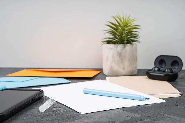 Pianta succulenta vista frontale con accessori da scrivania
