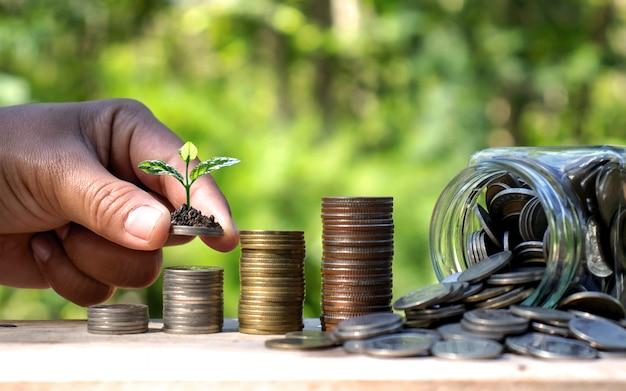 Piantare alberi su monete accanto a bottiglie di denaro sulla natura