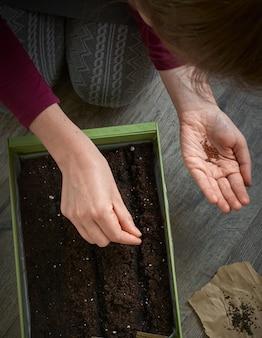 Piantare semi a casa.
