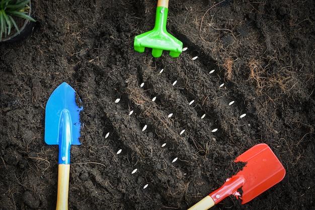 Piantare semi di zucca sul suolo nella scuola materna di agricoltura dell'orto, lavori di giardinaggio