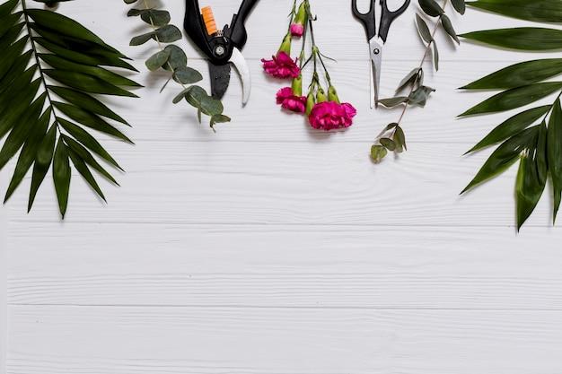 Piante e articoli di floristica