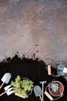 Piante e attrezzi da giardinaggio con spazio di copia