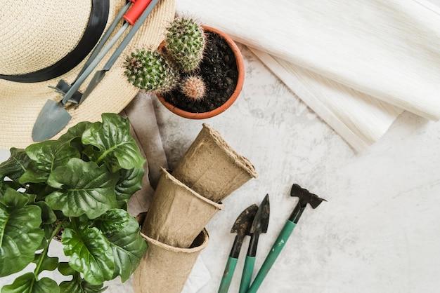 Piante in vaso; vasi di torba; strumenti da giardinaggio; cappello di paglia e tovagliolo su sfondo concreto