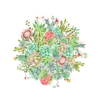 Piante succulente ad acquerello