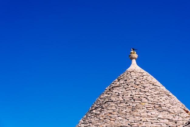 Piastrelle di pietra coprono i tetti dei trulli di alberobello