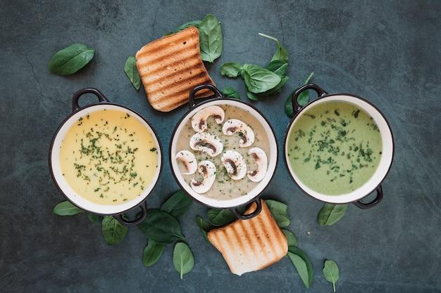 Piatto disteso di pentole con assortimento di zuppe