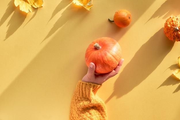 Piatto giallo di carta con mano femminile che tiene zucca arancione, piatto con lunghe ombre