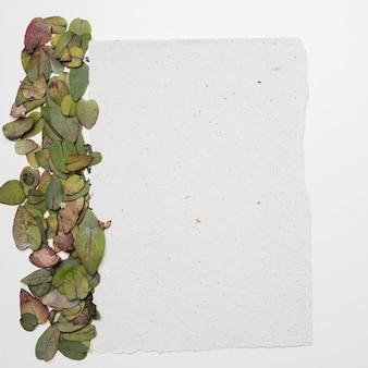 Piatto laici del modello di carta con il concetto di natura
