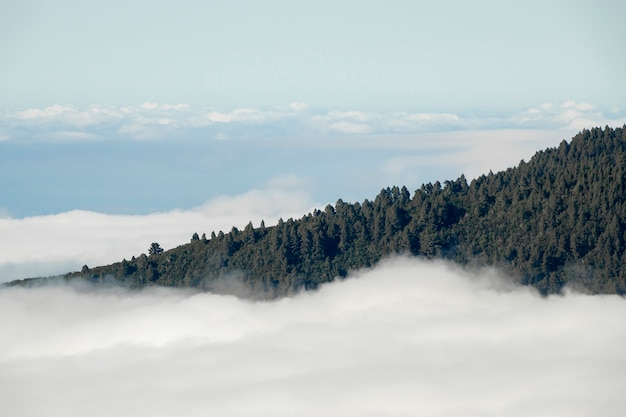 Picco di montagna sopra le nuvole