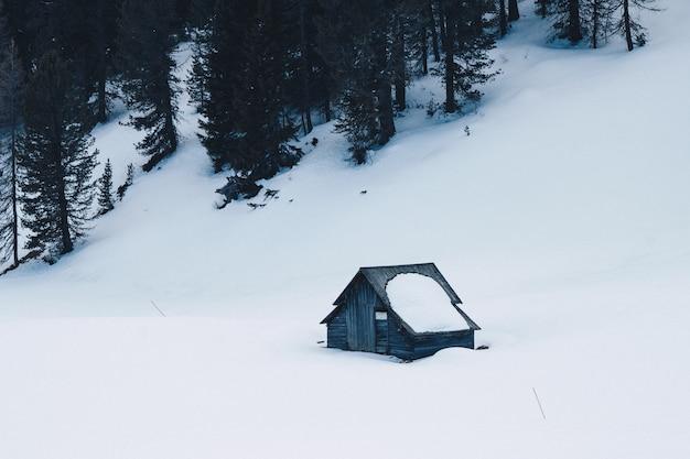 Piccola casa costruita a mano in legno in una foresta coperta di neve su una collina innevata