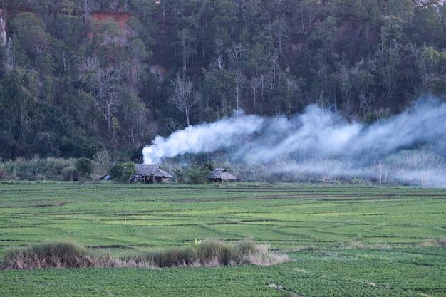 Piccola casa nella foresta tailandia del nord